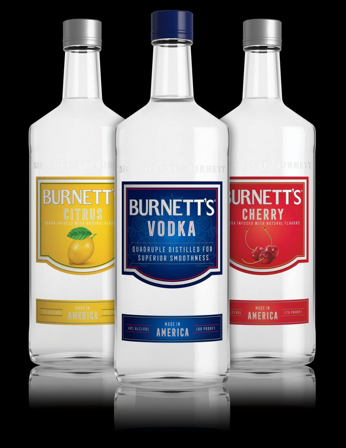 Burnett's Vodka Prices