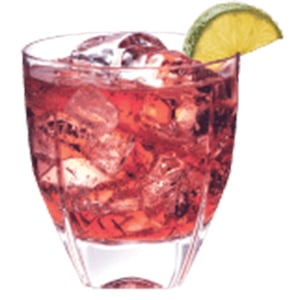 Burnett's Vodka Broad Street Treat Recipe