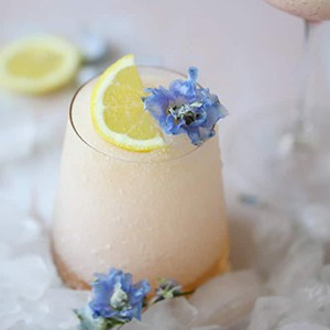 Burnett's Vodka Frose Recipe
