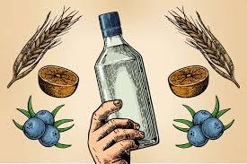 Genever Gin Taste Like