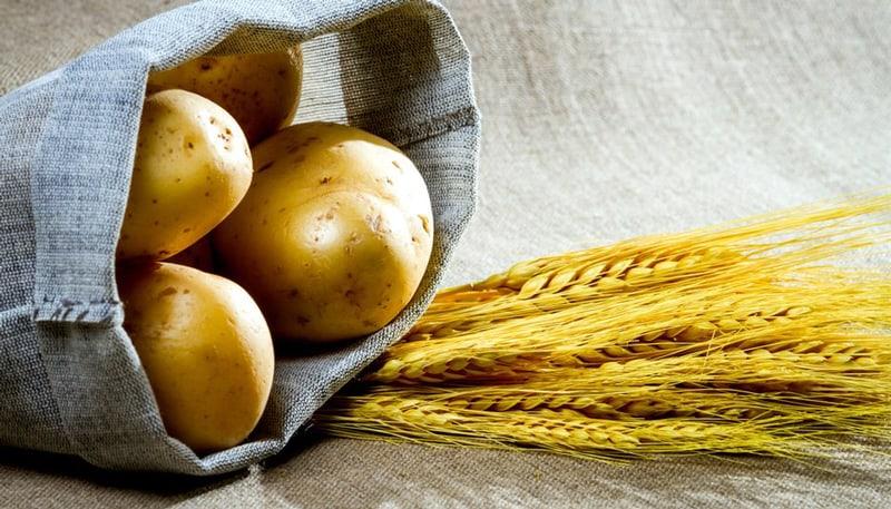 Potato Vodka vs. Grain Vodka: Understanding the Differences