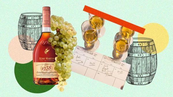 Remy Martin vs. Hennessy Ingredients