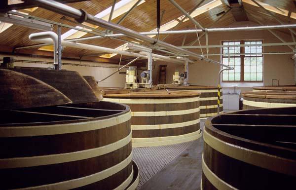 Macallan vs. Glenlivet Distillation