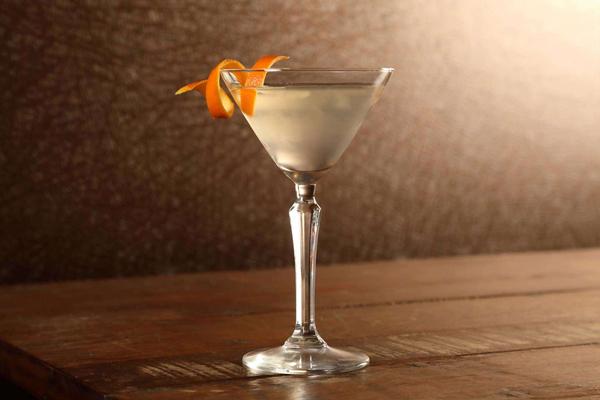 Vodka vs. Gin Martini: History